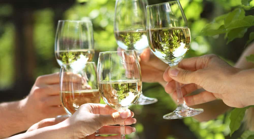 consejos buen bebedor vino año vino blanco