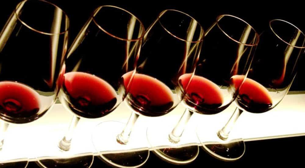 consejos buen bebedor vino copas