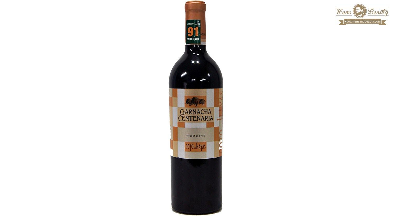 guia vino espana denominacion origen campo de borja coto de hayas