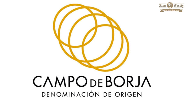 guia vino espana denominacion origen campo de borja