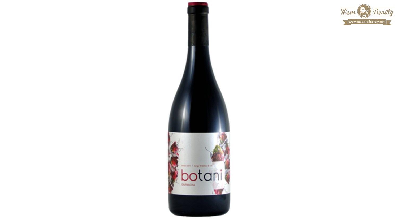 guia vino espana denominacion origen malaga botani