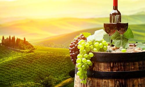 mejores vinos españa
