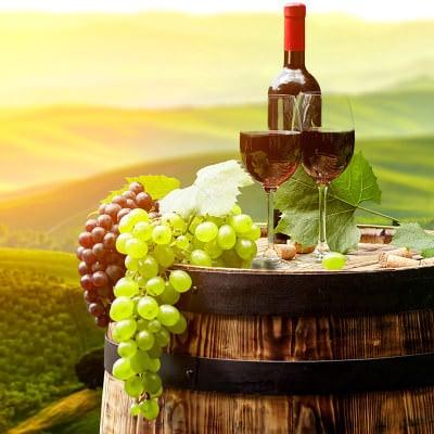 guia vino españa tipos denominaciones origen mejores caldos españoles