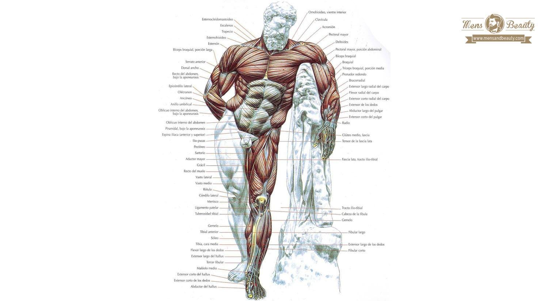 como hacer ejercicio en casa para hombres piernas